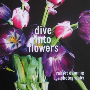 dive into flowers